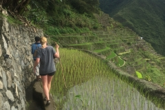 Kim - Batad Rice Terraces
