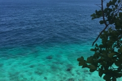 Apo Island - View Deck