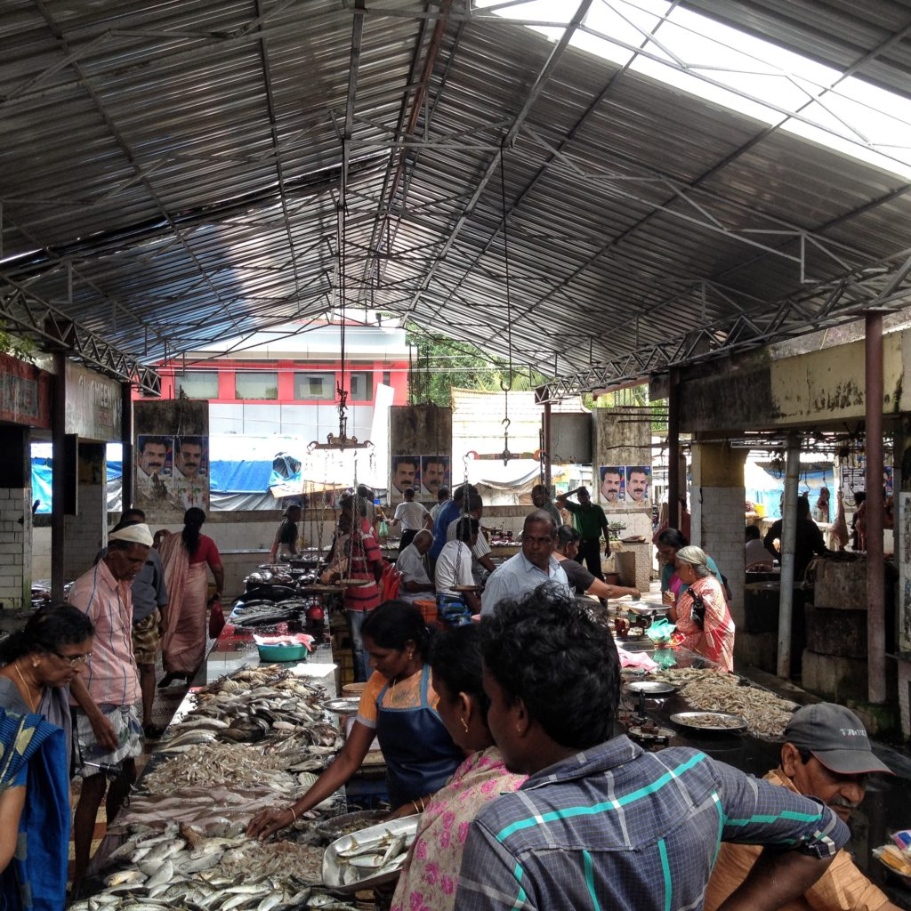 Travels in Kochi - Get your seafood - fresh!