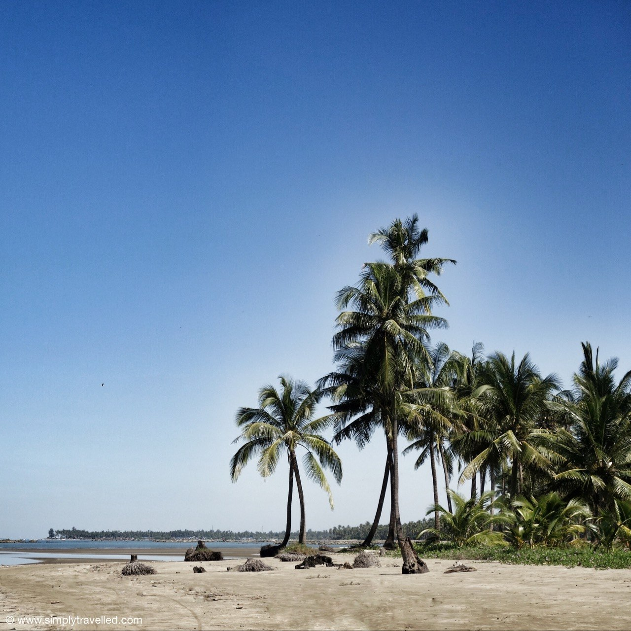 Island Life - Palm Trees ngwe saung beach